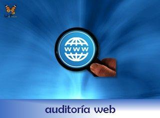 rotulo-servicio-auditoria-web-papillon-320x235-ok