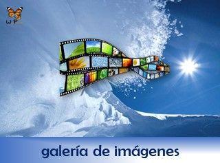 rotulo-servicio-galeria-de-imagenes-web-papillon-320x237